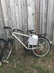 Bicycle with toddler seat