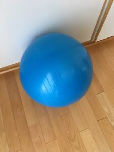 Ballon d'exercice 55 cm