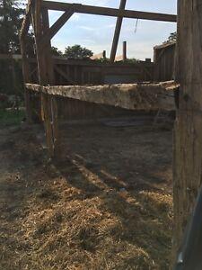 Barn Beams and Board 100+ yr old