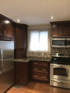 Must See! Gorgeous 3BR Apartment in Central Whitby