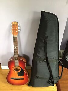 Guitar and case $90
