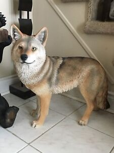Coyote animal statues