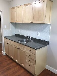 Completely Renovated 2 Bed, 1 Bath Apartment with New Microwave