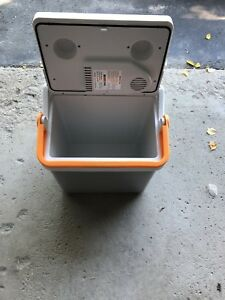 Portable electric cooler
