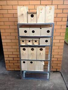 Bird boxes for sale Taylors Lakes Brimbank Area Preview
