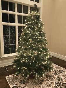 10' Costco Bayberry Spruce Tree - Pre lit