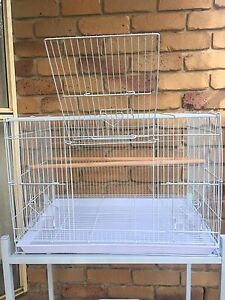 BRAND NEW flight cage 60cm x 40cm x 40cm $45each Helensvale Gold Coast North Preview