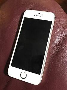 iPhone 5s  * reduced price*