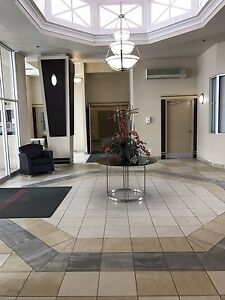 Great downtown apartment near walking paths