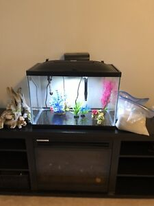 20 Gallon Fish Tank for Sale with EXTRAS!!