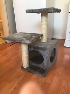 Kitten  play tower St Marys Penrith Area Preview