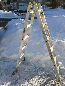 Vulcan extension/step Ladder