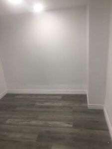 3 rooms in renovated basement apt near Christie park