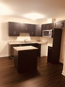 NEVER LIVED IN END TOWN HOUSE FOR RENT IN THOROLD, 3BR 3 BATH