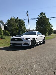 Mustang GT Track Pack