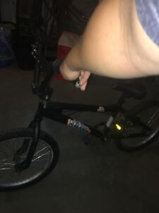 raleigh shark bmx bike