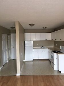 Wonderful Two Bedroom Suite - NAIT Area