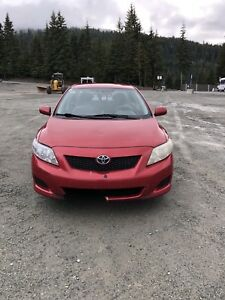 2009 Toyota Corolla for Sale
