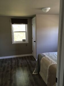 House to share - room for rent