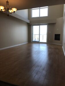 Two bedroom condo with the two bath in downtown Edmonton