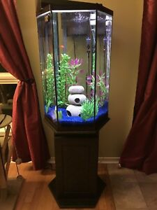 35 gallon fish tank with stand and all accessories