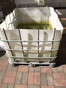 IBC Aquaponics Lesmurdie Kalamunda Area Preview