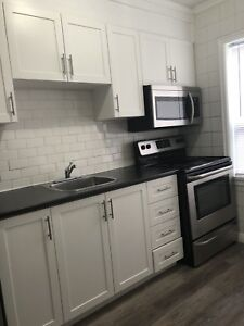Newly renovated very large two bedroom