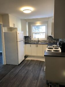 Newly renovated 3 bedroom 2 bathroom house for rent