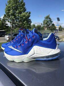 Nike Lebron 12 lows. Philippine edition. Size 9.5 mens