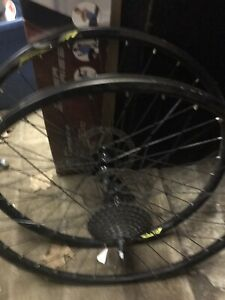 Mountain bike tires and rims