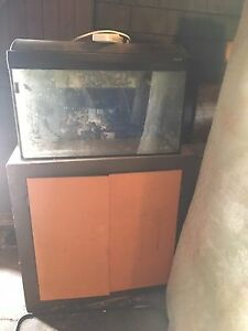 33 gallon tank, cover, sump, stand