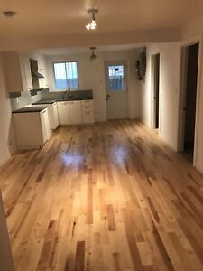 Beautiful newly renovated 2 bedroom ( Heart of St Henri)