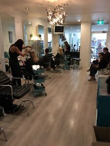 Ice Hairdresser In Sydney Region Nsw Hair Beauty Services Gumtree Australia Free Local Clifieds