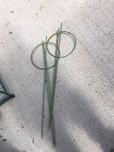 Fibre glass plants stakes