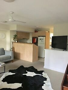 Awesome house share available - NewFarm New Farm Brisbane North East Preview