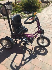 Adaptive Trike for Sale **reduced**