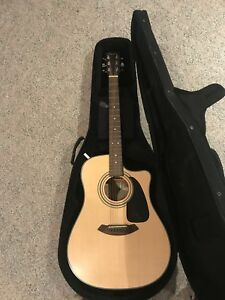 Acoustic-electric Fender Guitar