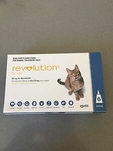 Revolution for cats Eagleby Logan Area Preview