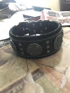 Brand new Bestia dog collar.