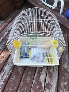 Bird cage for 25$ with and accessories 514 6853129