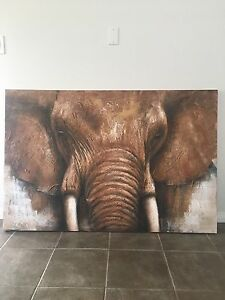 For The Elephant Lovers
