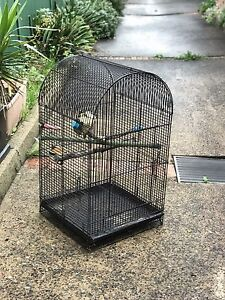 Large Outdoor Pet Bird Cage 90cm Leichhardt Leichhardt Area Preview