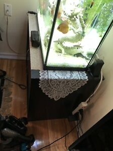 40 gallon fish tank and stand for sale