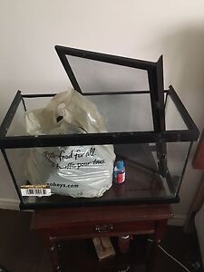 Leopard Gecko Tank and Accessories