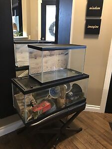 Reptile enclosures  and all equipment