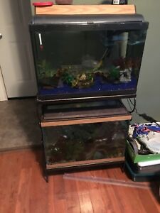 Two 20 gallon tanks