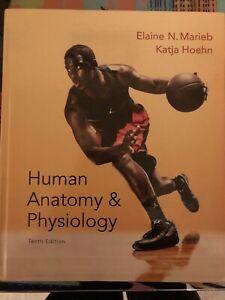 Textbooks Anatomy Physiology | Great Deals on Books, Used