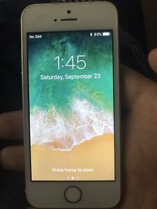 Apple iPhone se 16gb rose gold mint condition