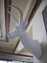 New White Deer Head Statue Wall Mounted Stag Home Decor Taxidermy Melbourne CBD Melbourne City Preview