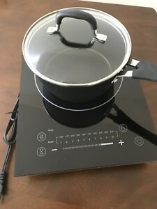 Induction cooktop and pot.